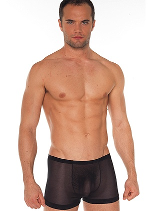 lingerie Boxer transparent Performer